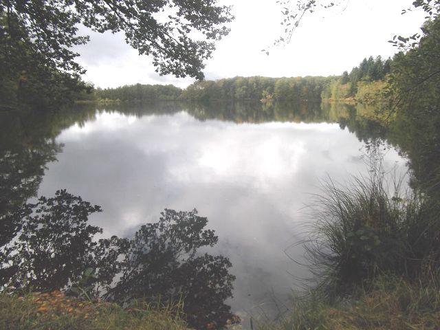 Sur le plateau des 1 000 étangs Etang_14