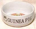 Εικόνες από τον εξοπλισμό των ινδικών χοιριδίων Whitep10