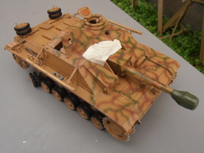 "Stug III ausf G "" 10,5 cm "" ( Tamiya, panzer art 1/35eme ) P1050913"