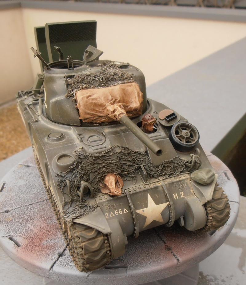 """Sherman M4   """" deep wading """" ( tamiya 1/35eme ) - Page 2 P1261013"""