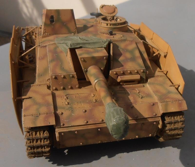 Stug III ausf G ( tamiya 1/35 ème ) P3090315
