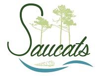 ECLIPSE PARTIELLE DU SOLEIL - jeudi 10 juin 2021 à Saucats  Logo_s10