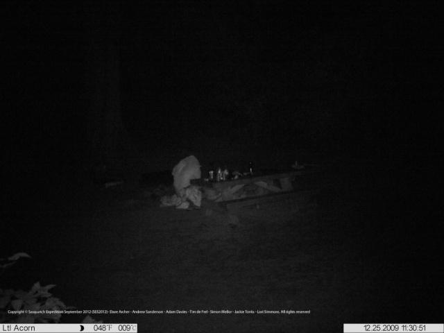 Bigfoot, photo thermique et forêt… Bigfoo10