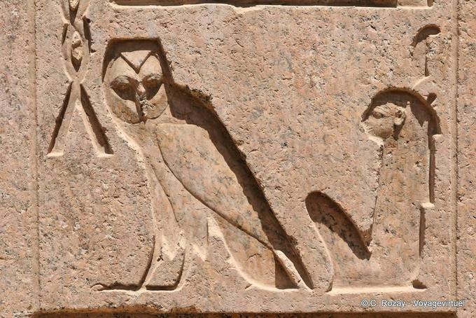 Oiseaux de nuit Luxor-10