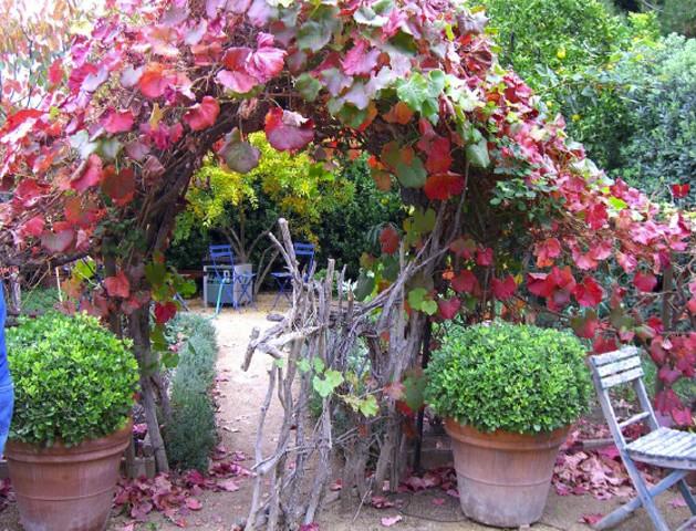 Bon Jeudi Garden10