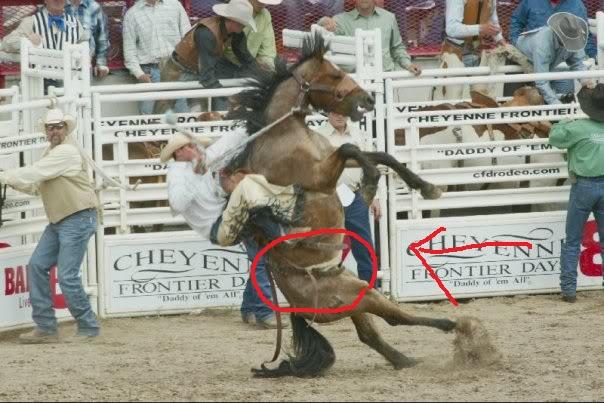 Bon Lundi Rodeo110