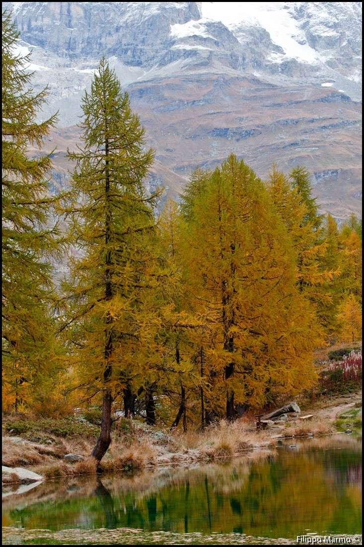 un po di montagna e della Valle d'Aosta Dsc_3513
