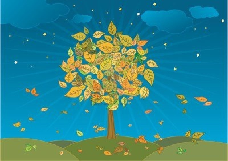 Bon Dimanche Autumn10