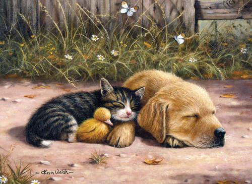Bon Dimanche Sleep_24