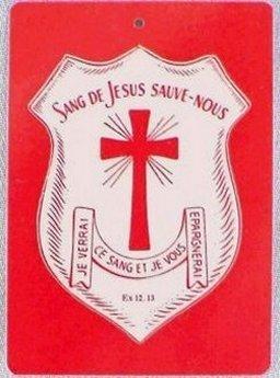 SONDAGE :  Avez-vous fait couvrir vos Maisons avec le Précieux Sang de Jésus ? - Page 2 Patr_o10