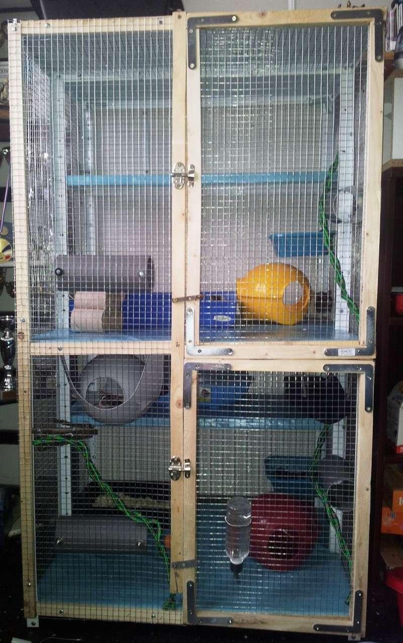 Ma nouvelle cage 20130611