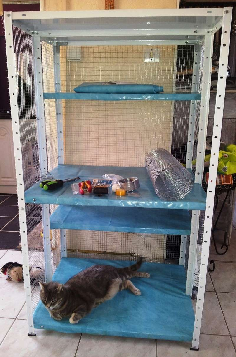 Ma nouvelle cage 20130612