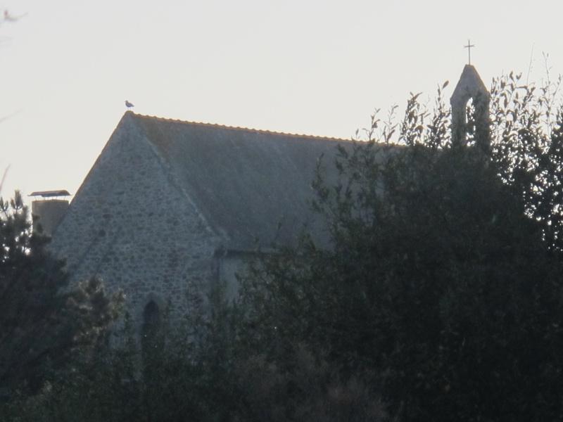L'Anse du Verger et Notre Dame du Verger Bretag12