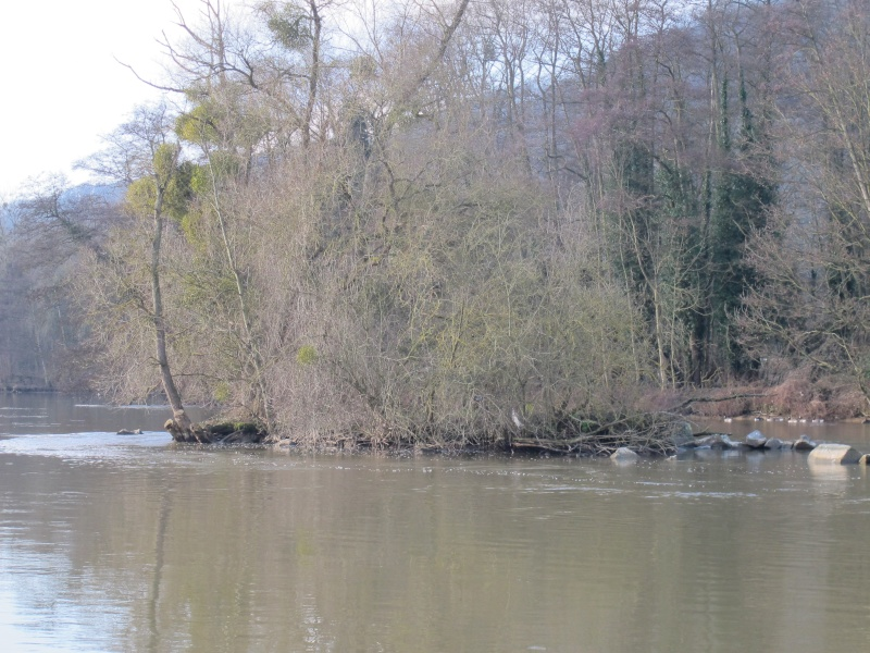 Balade en Haute Meuse Dinantaise Meuse_13