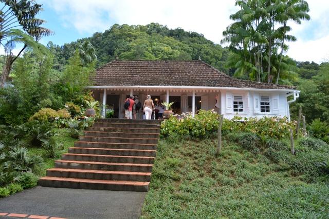 (972) Le jardin botanique de Balata - Martinique 21janv21