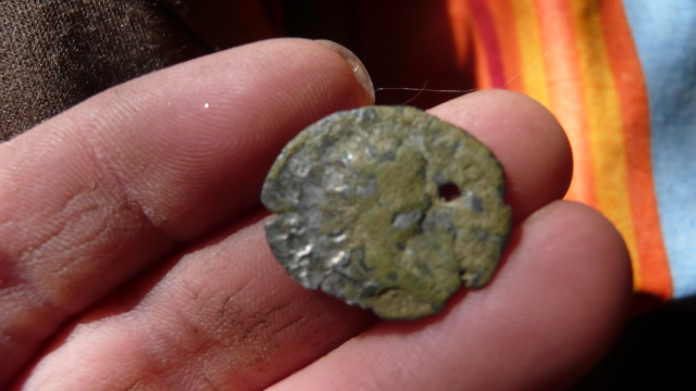 romaine en bilon P1230215