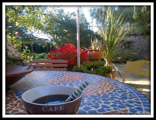 LE CAFE, breuvage précieux Cafa10
