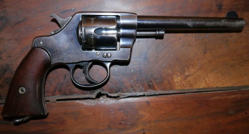 Recherche d'information concernant un Colt Army Model 1884/1901 P1110421
