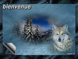 Bonjour à tous de lionel45 Images11