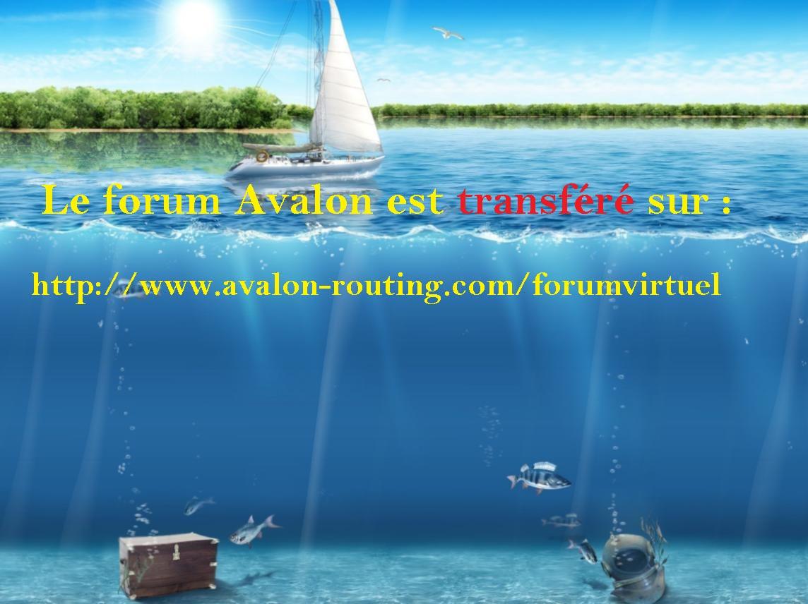 Avalon sur Virtual Regatta