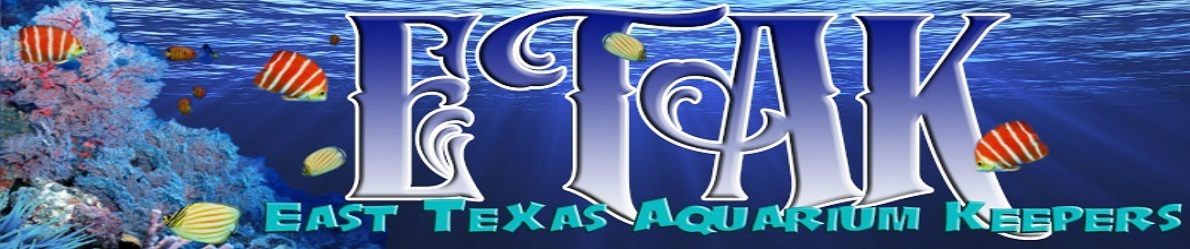 Free forum : East Texas Aquarium Keepers Long_e11