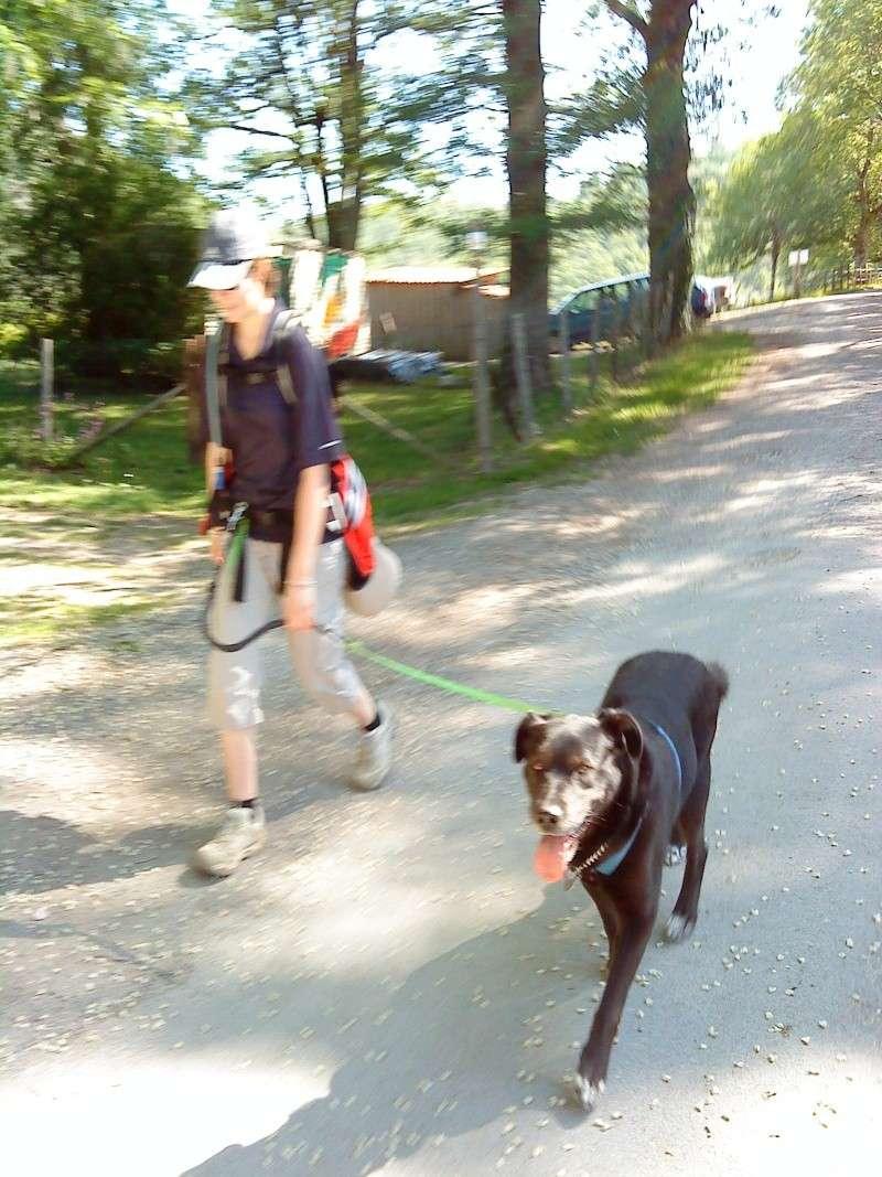 Vos activités canines : en club......ou pas ! Photo_19