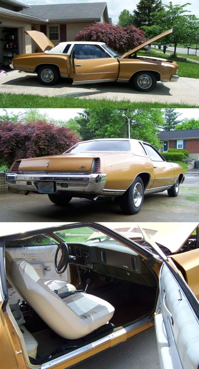 Introducing me&my project 73 Monte Carlo (if I can get the pictures to load) 73mont10