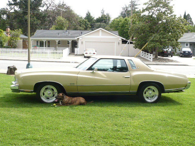 Introducing me&my project 73 Monte Carlo (if I can get the pictures to load) B3zkcu10