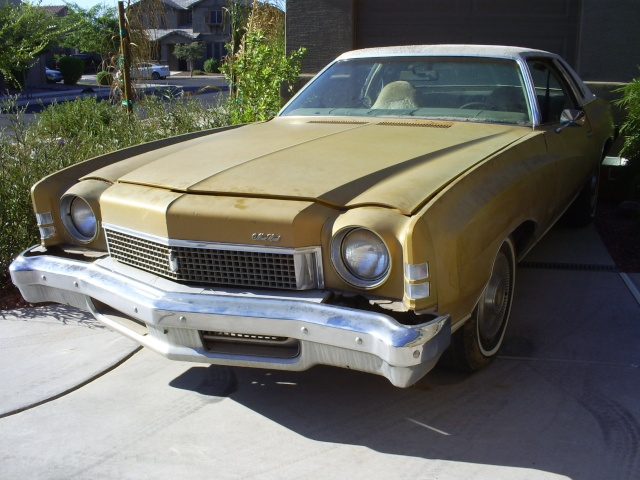 Introducing me&my project 73 Monte Carlo (if I can get the pictures to load) S5032314