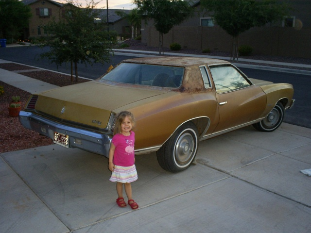 Introducing me&my project 73 Monte Carlo (if I can get the pictures to load) S5032315