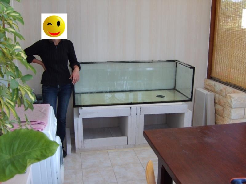 mur végétal+aquarium 3-raal10