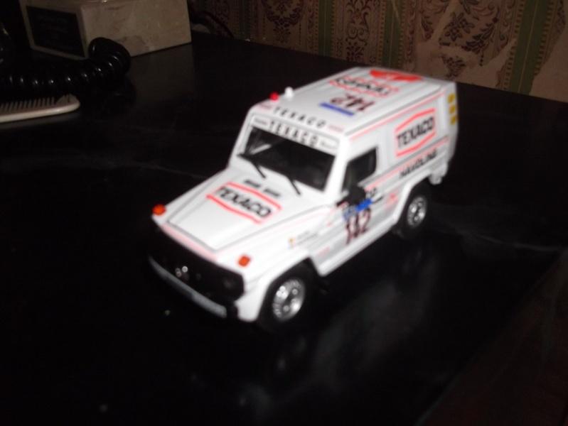 vos miniatures Dscf3521