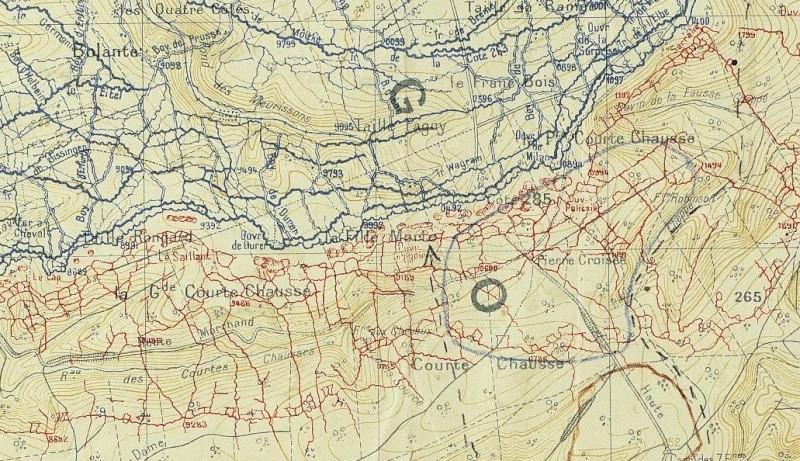"""Vestiges de la """"guerre des mines"""" (Première Guerre Mondiale) visibles dans Google Earth Shdgr_13"""