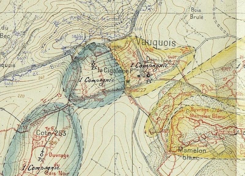 """Vestiges de la """"guerre des mines"""" (Première Guerre Mondiale) visibles dans Google Earth Shdgr_14"""
