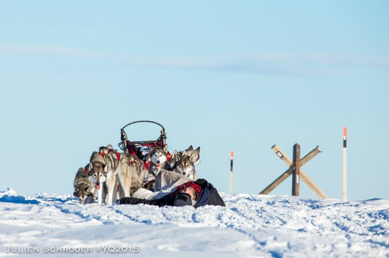 YUKON QUEST 2015 - Page 2 Mike_210