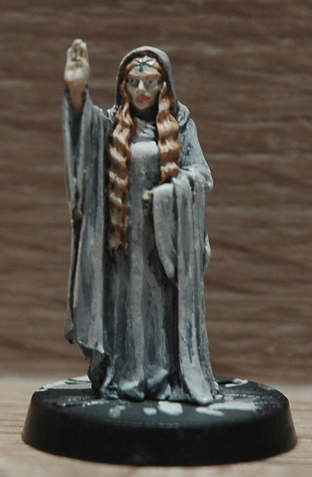 Galerie d'Aerendel [Nains, Khazad, Gondor, Elfes...] - Page 3 Dsc_2320