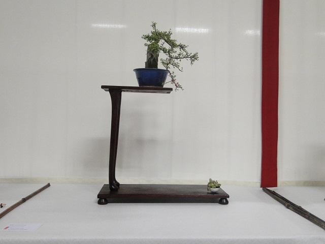 re:maulévrier(49)22°salon du bonsai 8et9septembre 2012 - Page 3 01210