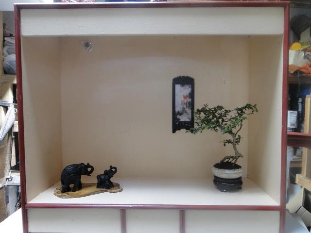 bonsai mame  06910