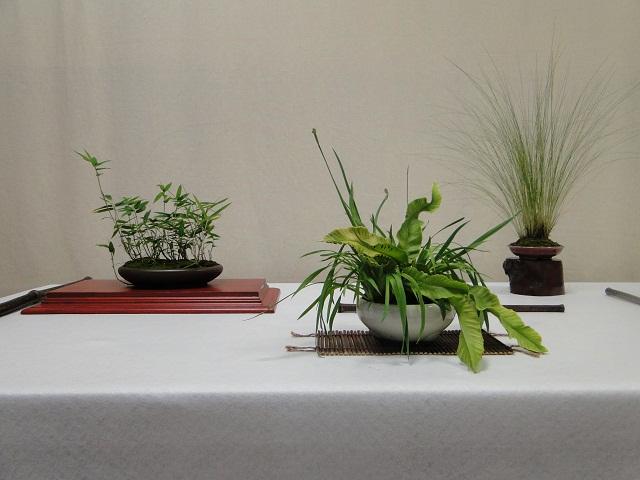 re:maulévrier(49)exposition de kusamono 8et9 septembre 2012 10410