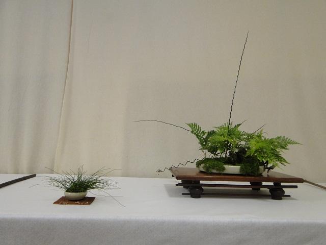 re:maulévrier(49)exposition de kusamono 8et9 septembre 2012 11410