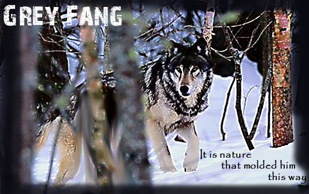 ...What's to come... Fang0212