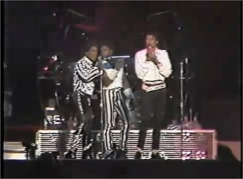 [DL] Victory Tour Mile High Stadium 8 Sept,1984 Mile_310