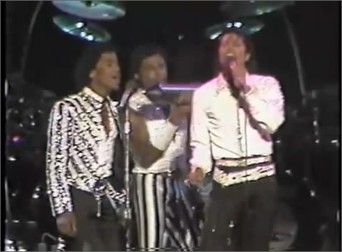 [DL] Victory Tour Mile High Stadium 8 Sept,1984 Mile_410