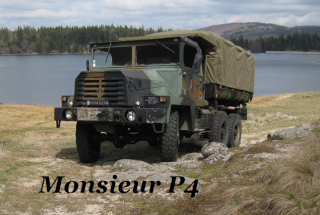 Amis - Citrogoss Mp410
