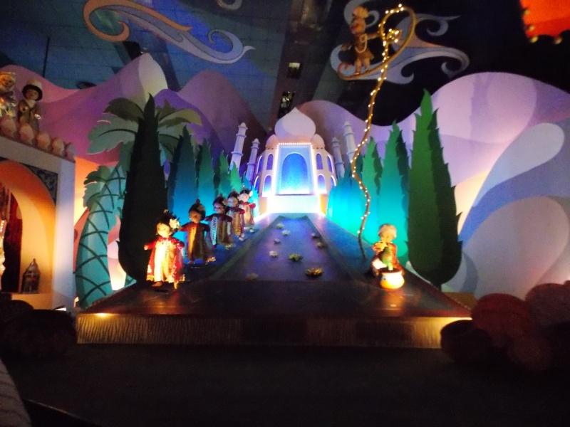 Le Disneyland Hôtel en amoureux du 11 au 13 janvier 2015 (Début du TR p2) - Page 2 Dscn8837