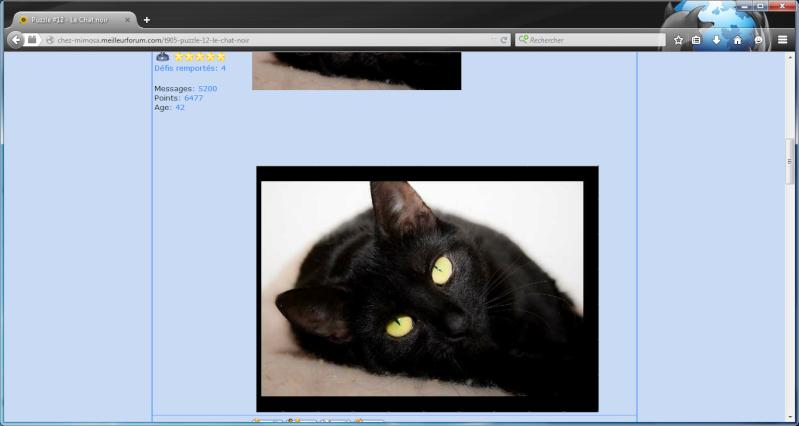 Puzzle #12 - Le Chat noir 1a55