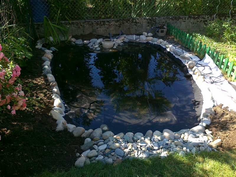 mon bassin 30062011