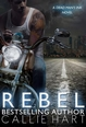 Carnet de lecture de Julie Ambre Rebel10