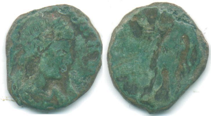 nummus de Constans ou Constantius II 6022_a10