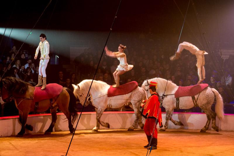 Festival international du cirque de Massy P1050010